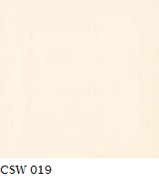 CSW 019.png