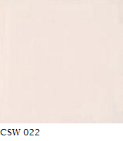 CSW 022.png