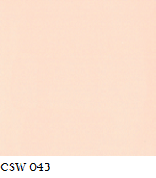 CSW 043.png
