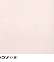 CSW 049.png