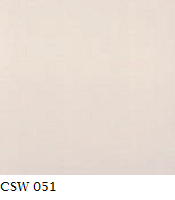 CSW 051.png