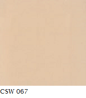 CSW 067.png